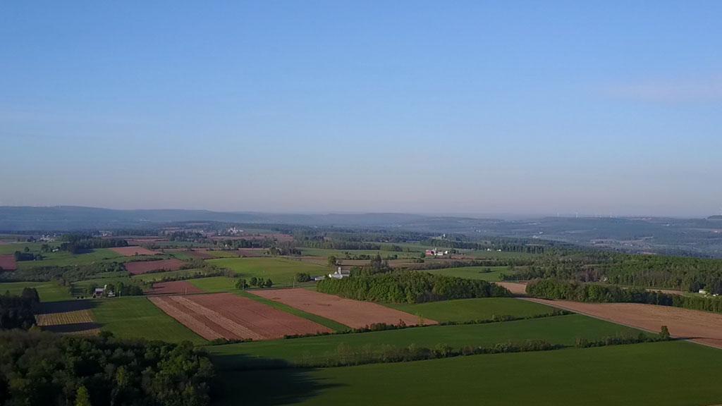 Spring Time - Farm Fields
